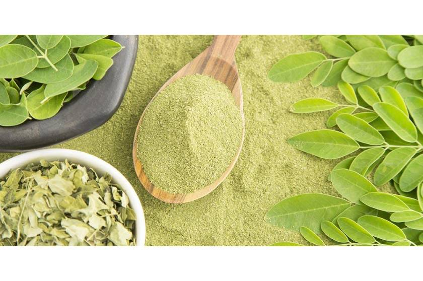 MORINGA SALENTO PLUS